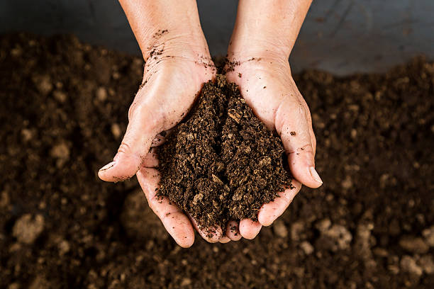 Distribution de sacs de compost